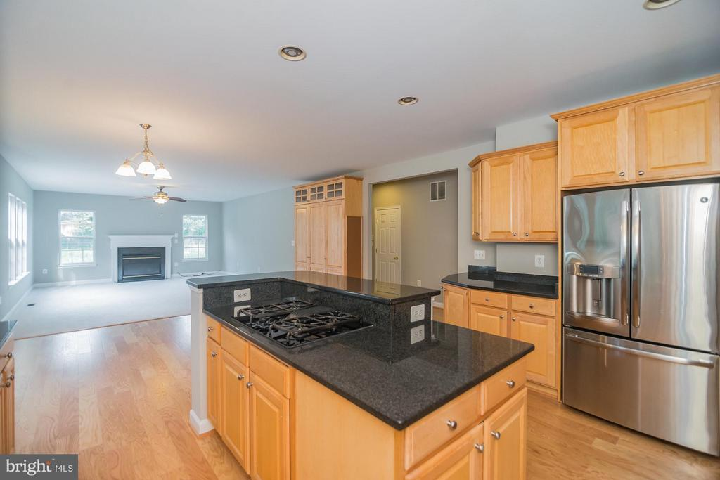 Gas cooktop and stainless steel appliances. - 25975 MCCOY CT, CHANTILLY