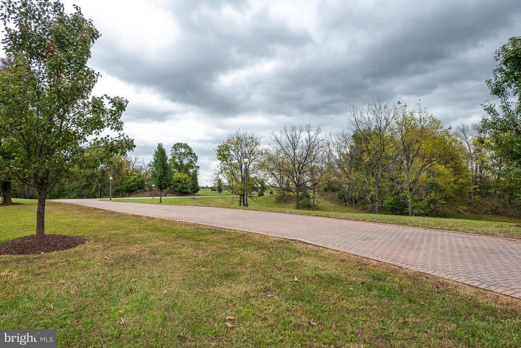 All brick driveway throughout w/street lights - 6586 JOHN MOSBY HWY, BOYCE