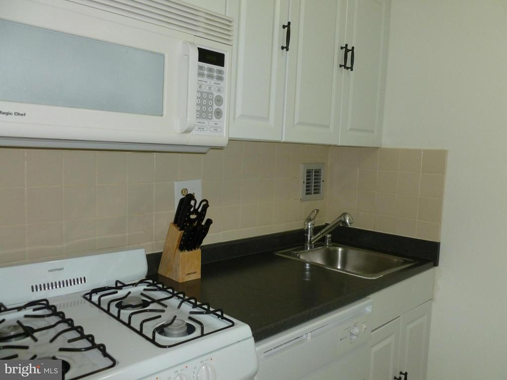 Kitchen - 1011 ARLINGTON BLVD #1043, ARLINGTON
