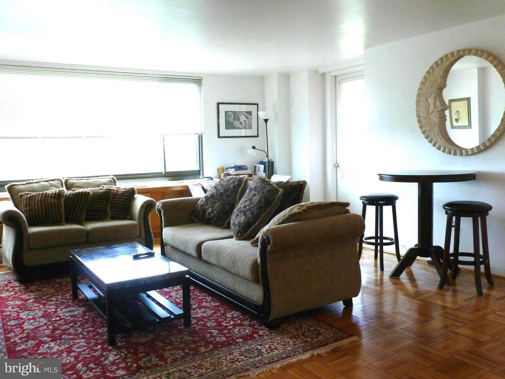 Living Room - 1011 ARLINGTON BLVD #1043, ARLINGTON