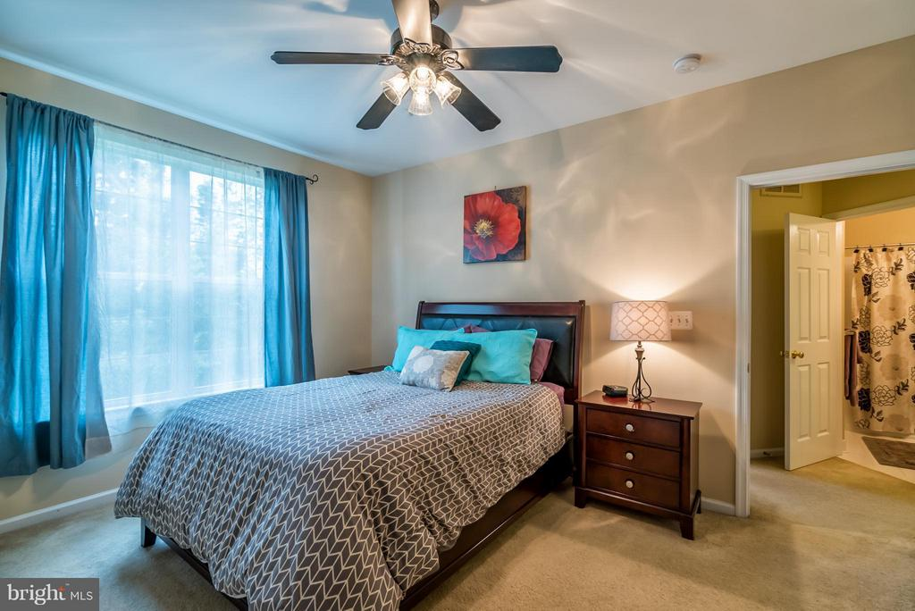 Spacious Master with Ceiling Fan - 20385 BELMONT PARK TER #116, ASHBURN