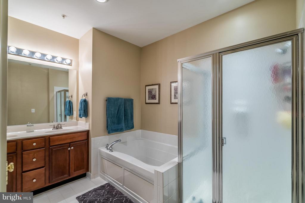 Large Master Bathroom - 20385 BELMONT PARK TER #116, ASHBURN