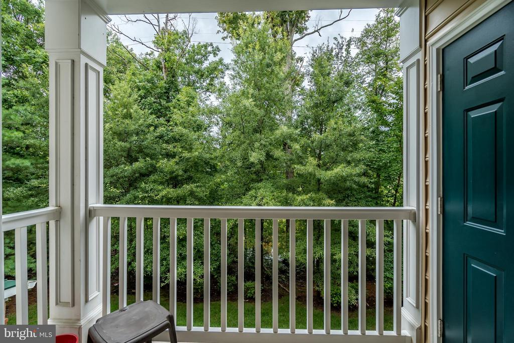 Beautiful View of Woods & Backs to W&OD - 20385 BELMONT PARK TER #116, ASHBURN