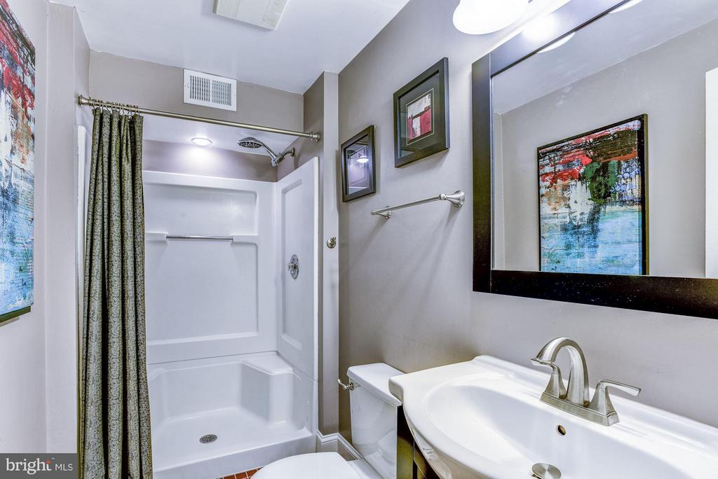 Bath, Lower Level - 5551 CEDAR BREAK DR, CENTREVILLE