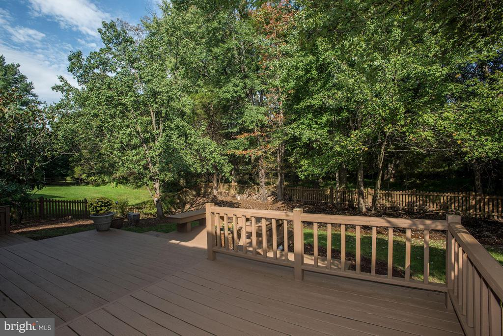 Tiered Sun Deck - 5551 CEDAR BREAK DR, CENTREVILLE