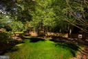 Back Yard - dedicated Parkland beyond! - 5551 CEDAR BREAK DR, CENTREVILLE
