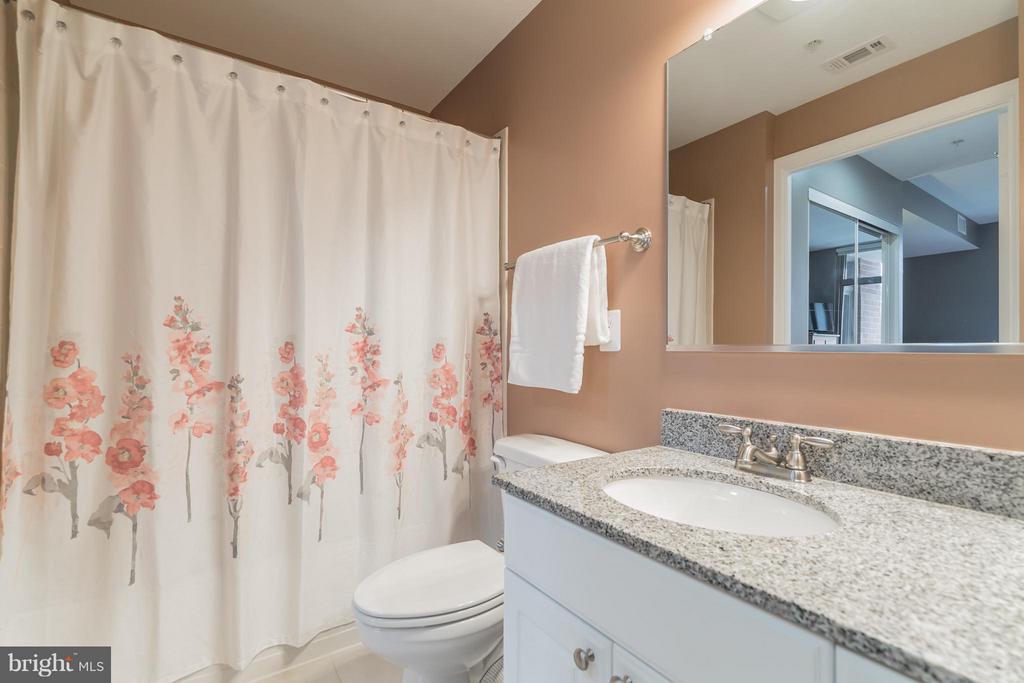Bath (Master) - 3650 GLEBE RD #541, ARLINGTON