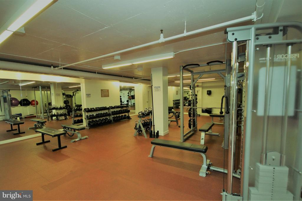 Fitness Center Weight Room area - 1600 OAK ST #1727, ARLINGTON
