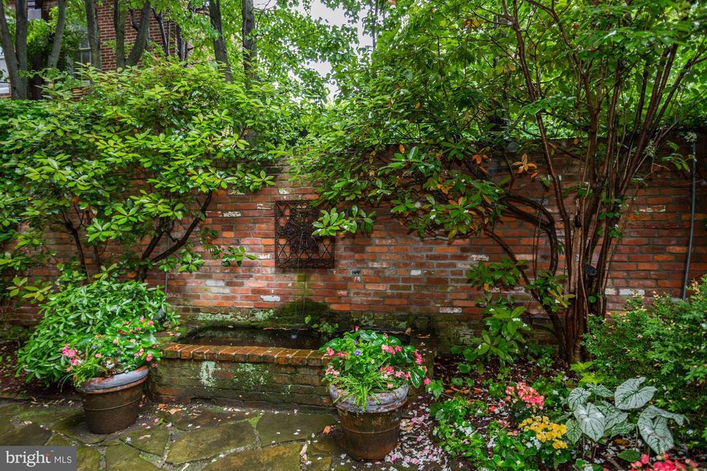 Rear Garden Fountain - 3005 O ST NW, WASHINGTON