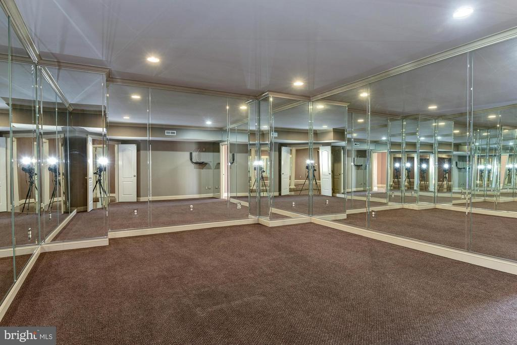 Exercise Room - 1063 SILENT RIDGE CT, MCLEAN