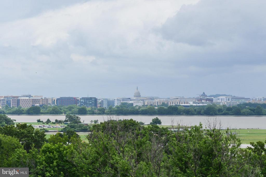 View - 1805 CRYSTAL DR #810, ARLINGTON