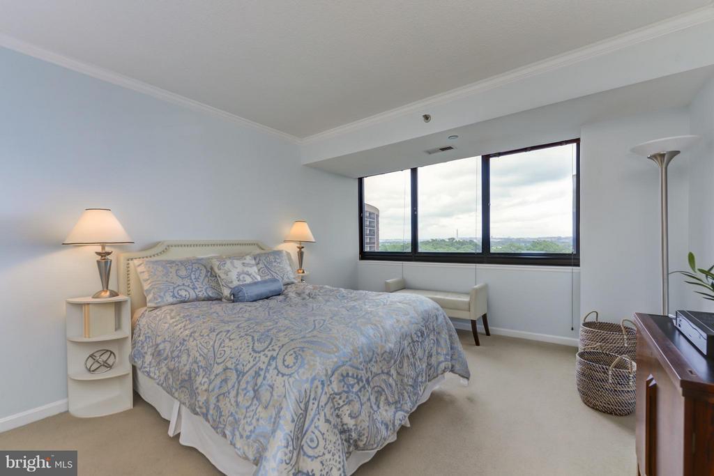 Bedroom (Master) - 1805 CRYSTAL DR #810, ARLINGTON