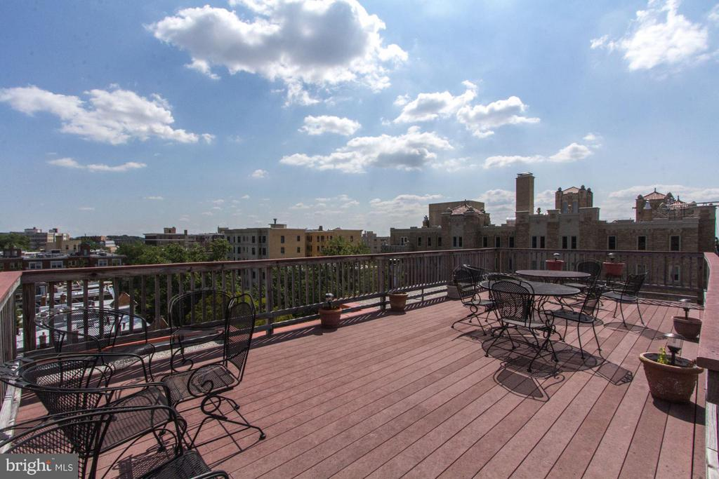 Spectacular roof deck w/ sweeping views - 2301 CONNECTICUT AVE NW #2C, WASHINGTON