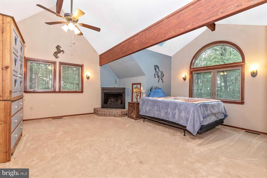 Upper level 2nd master bedroom with gas fireplace. - 914 TREVANION RD, UNION BRIDGE
