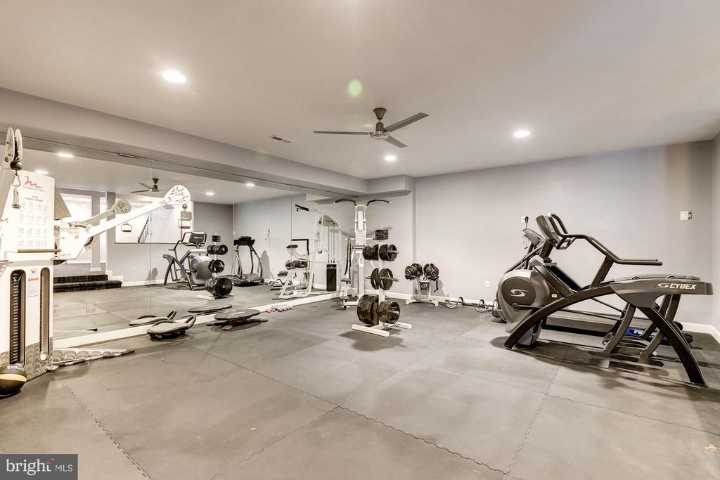Lower Level Exercise Room - 1416 WYNHURST LN, VIENNA