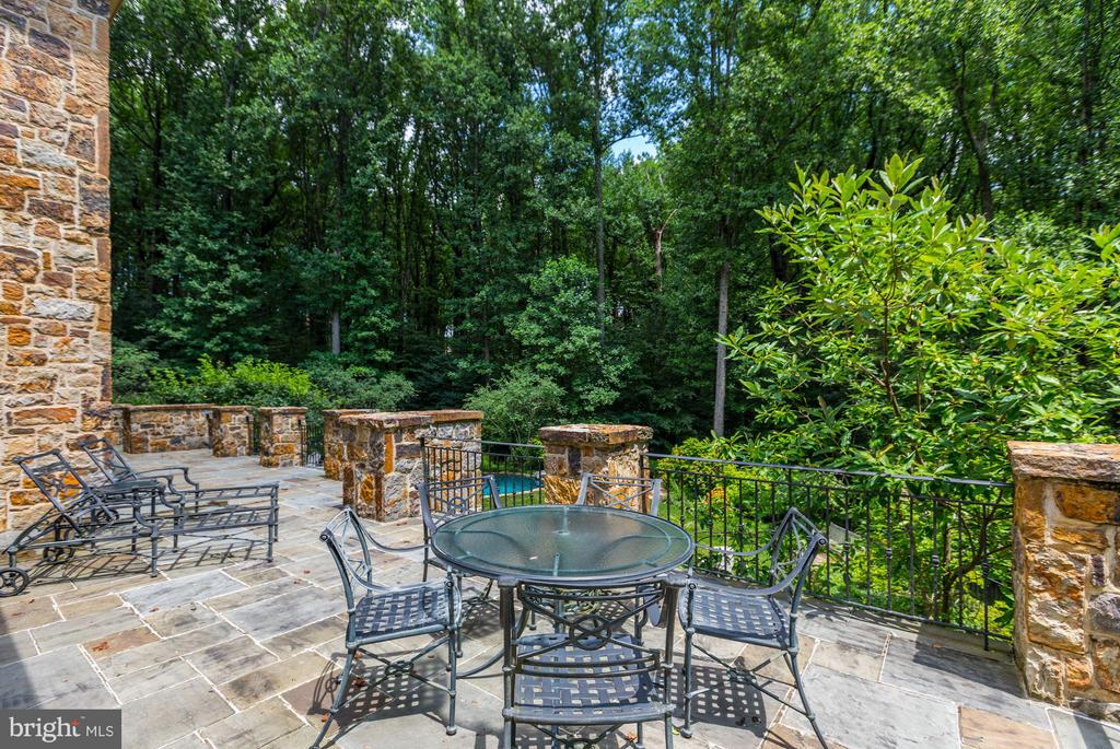 Rear Terrace overlooking Garden & Pool - 7019 NATELLI WOODS LN, BETHESDA