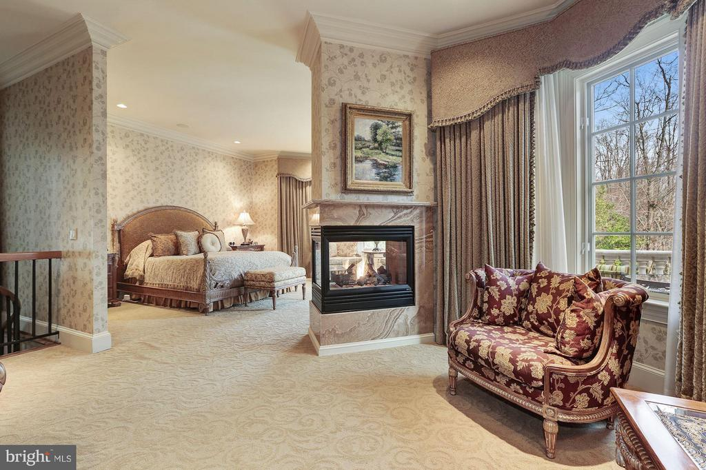 Main Level Master Suite - 896 ALVERMAR RIDGE DR, MCLEAN