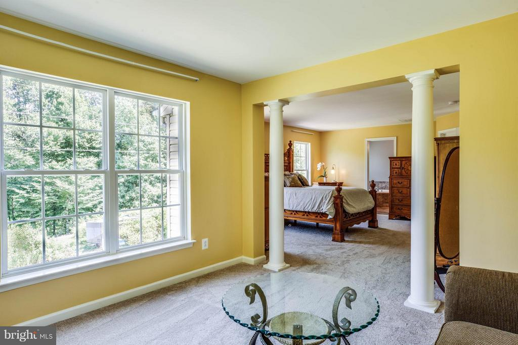 Sitting room with columns and sweeping views - 10214 DARDEN CT, SPOTSYLVANIA