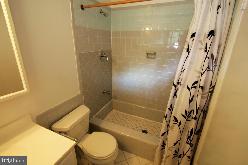 Bath (Master) - 4136 WATKINS TRL, ANNANDALE