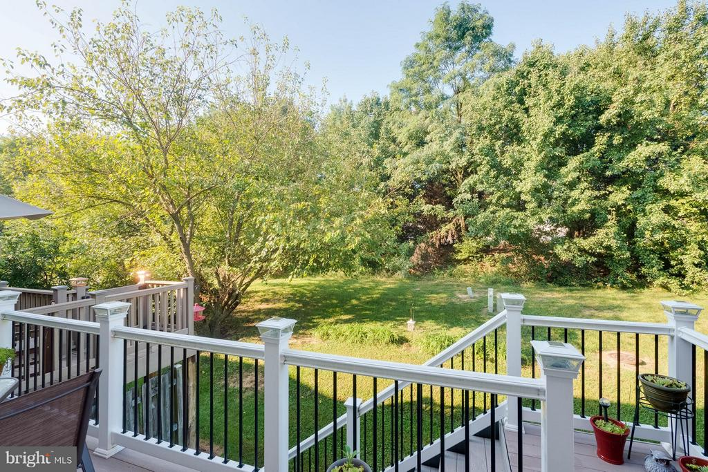 Nice treed view - 309 BARROWS CT, FREDERICKSBURG