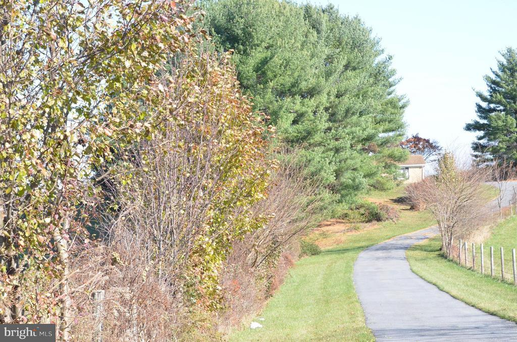 Driveway leading to home - 7115 DAMASCUS RD, GAITHERSBURG