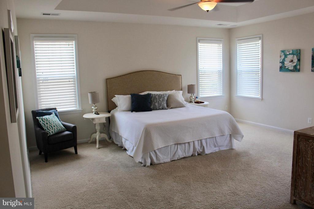 Enormous Owner's suite with two walk in closets. - 41846 APATITE SQ, ALDIE
