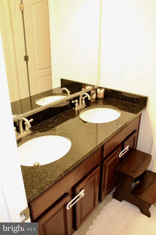 Upper level bath upgraded title, granite, fixtures - 41846 APATITE SQ, ALDIE