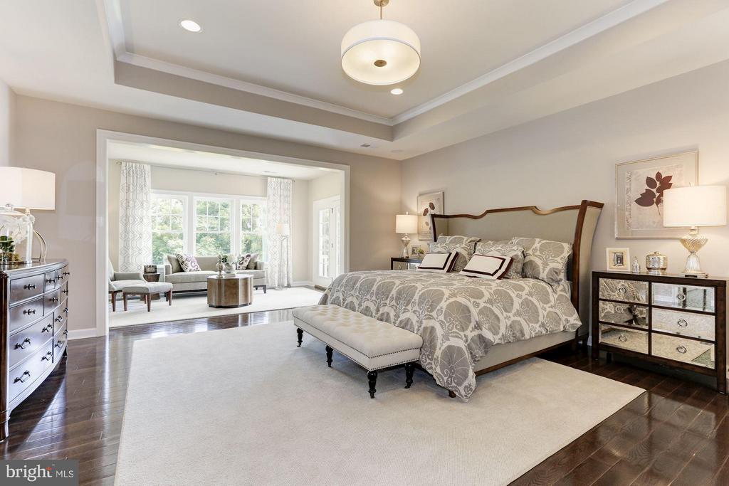 Owner's suite has large walk in closet - 40736 WILD PLUM DR, ALDIE