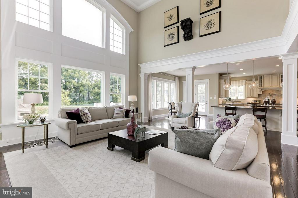 Family Room with 19' coffered ceiling - 40736 WILD PLUM DR, ALDIE