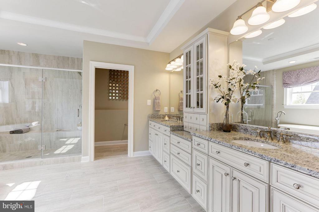Luxurious en suite Owner's bath - 40736 WILD PLUM DR, ALDIE