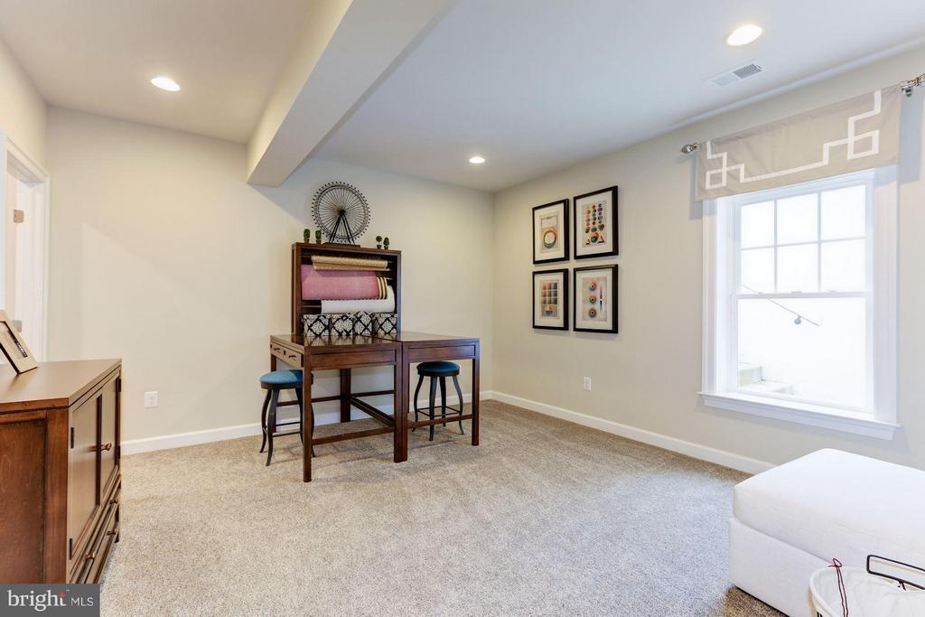 Bedroom 6 in lower level with walk in closet - 40736 WILD PLUM DR, ALDIE