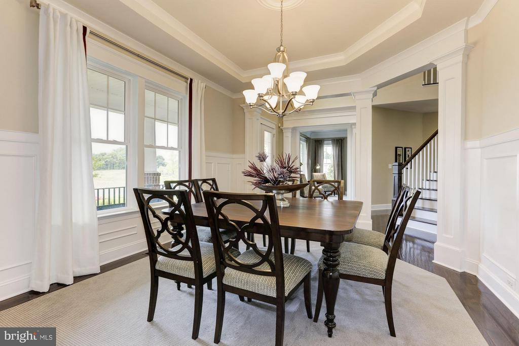 Dining Room off foyer with tray ceiling - 40736 WILD PLUM DR, ALDIE