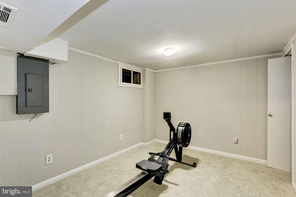 Bonus Room / Gym - 6053 MUNSON HILL RD, FALLS CHURCH
