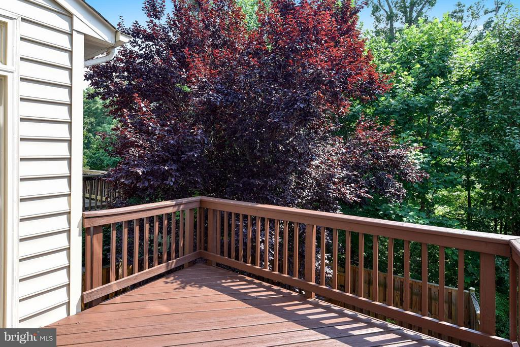 Enjoy your deck with mature trees - 16020 BARN SWALLOW PL, WOODBRIDGE