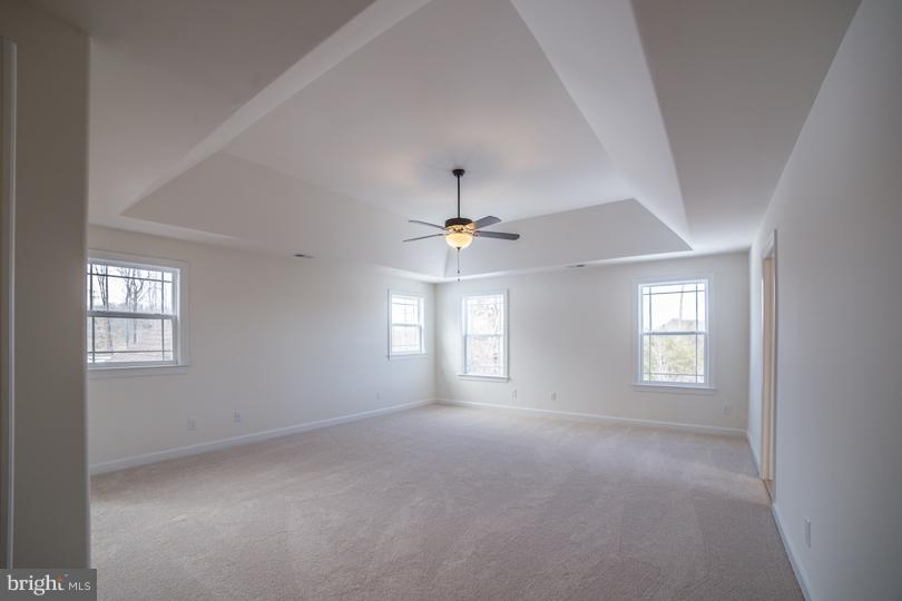 Master Bedroom with optional Tray Ceiling - STILLWATER - LOT 14, FREDERICKSBURG