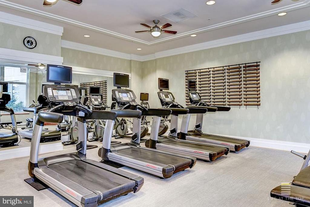 Exercise Room - 8220 CRESTWOOD HEIGHTS DR #714, MCLEAN