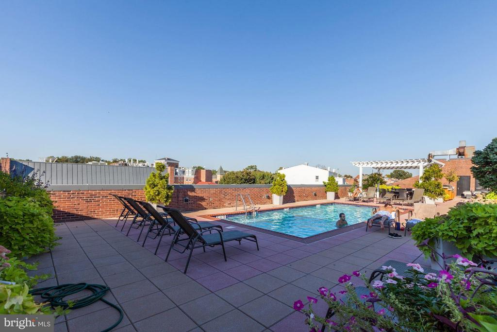 Rooftop Terrace with Pool - 3251 PROSPECT ST NW #402, WASHINGTON