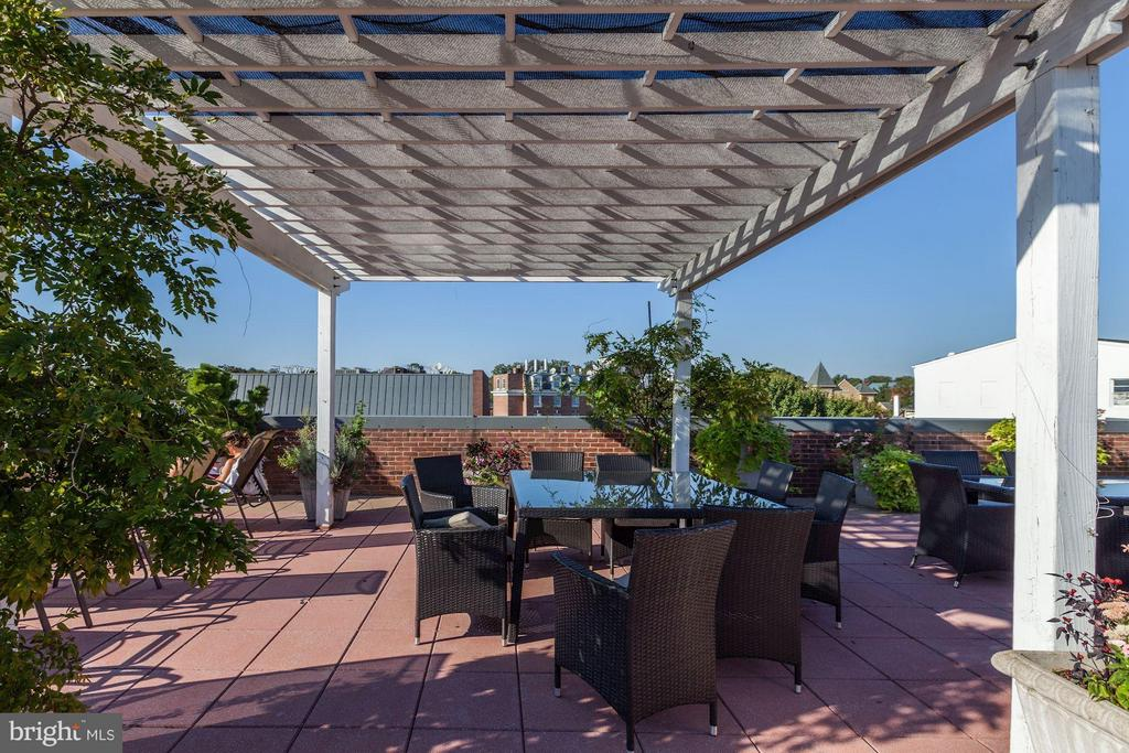 Rooftop Terrace with Views - 3251 PROSPECT ST NW #402, WASHINGTON