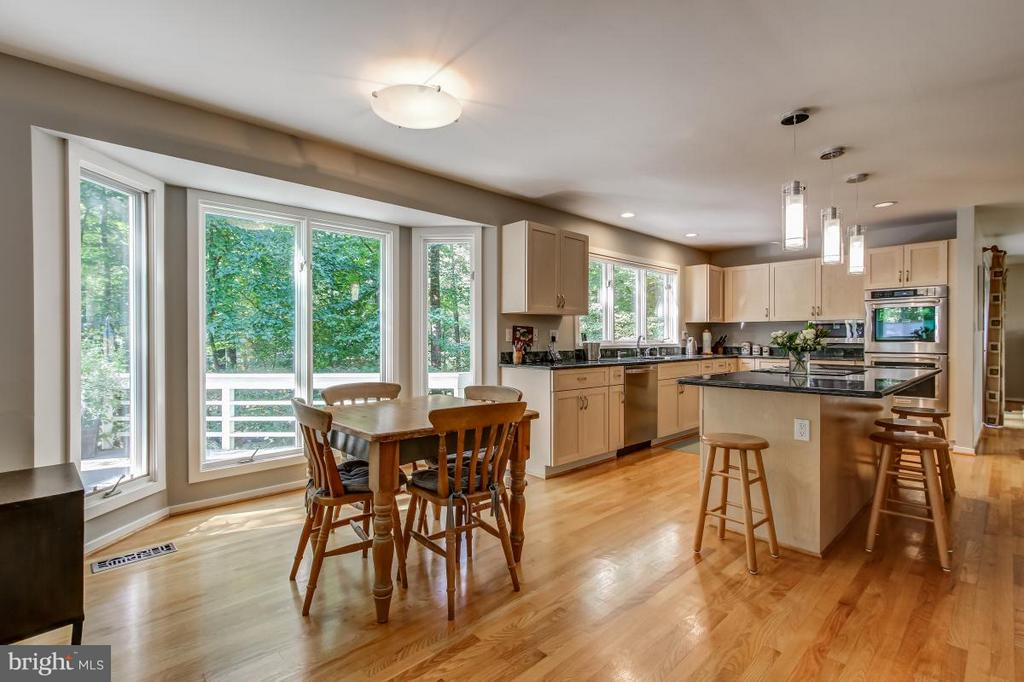 Terrific flow across the back of the house - 1511 N VILLAGE RD, RESTON