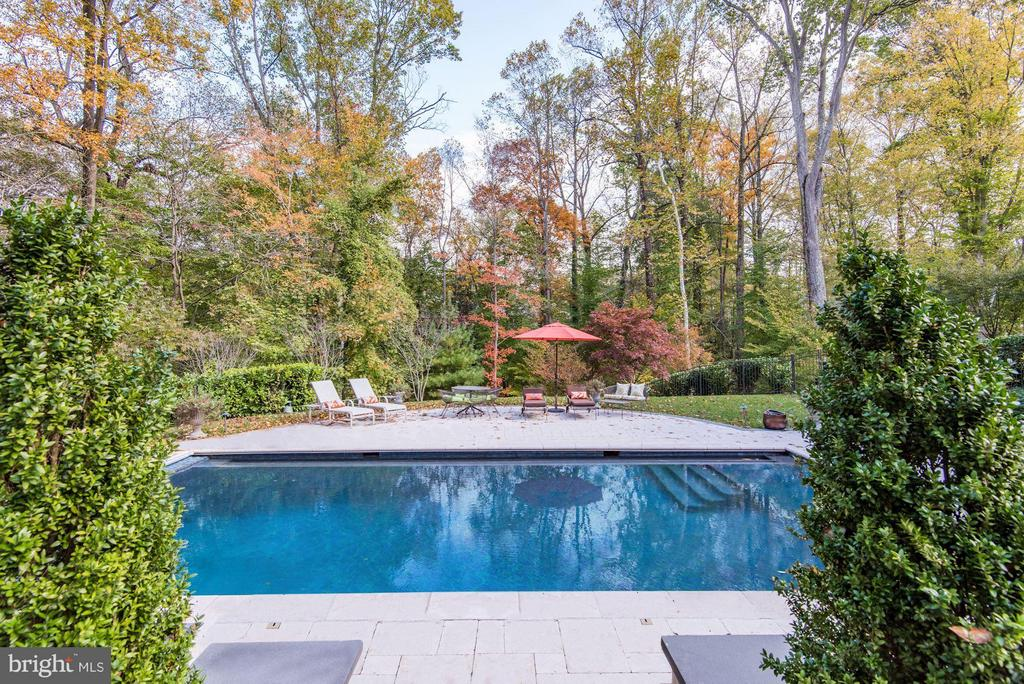Pool w/ Jets - 906 TURKEY RUN RD, MCLEAN
