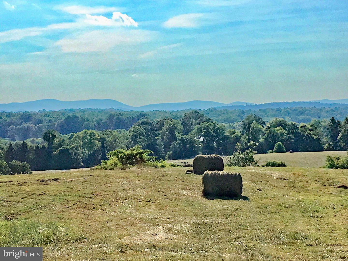Land for Sale at 24 Lots Oak Shade Rd Rixeyville, Virginia 22737 United States