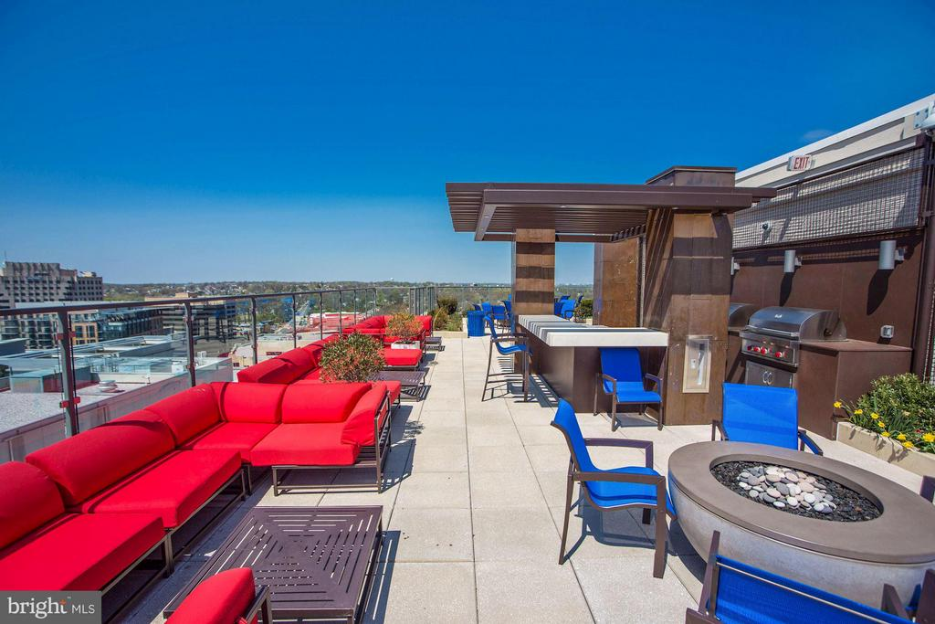 Brand new rooftop w/ fire pits, seating - 851 GLEBE RD #1518, ARLINGTON
