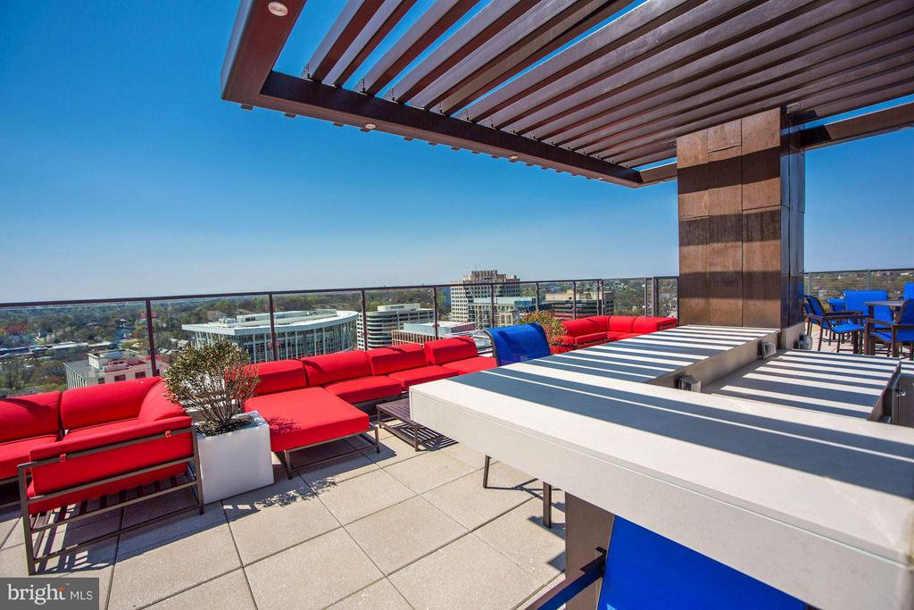 Outdoor kitchen w/ panoramic views! - 851 GLEBE RD #1518, ARLINGTON