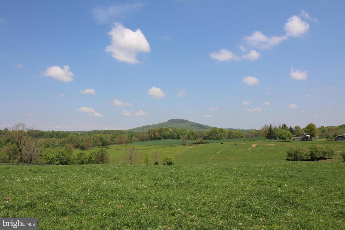 Land for Sale at 18915 Barnesville Rd Dickerson, Maryland 20842 United States