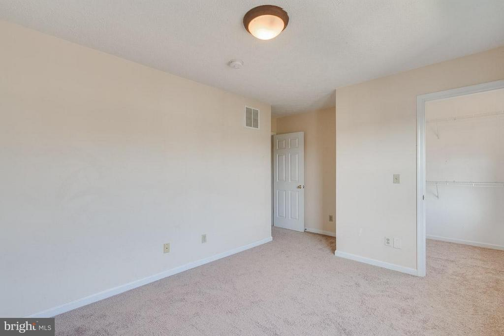 Large Walk-In Closet - 319 COPPERFIELD LN, WINCHESTER