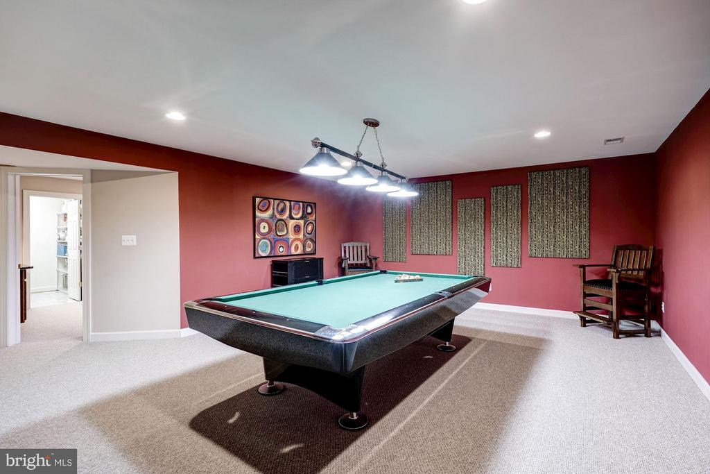 Lower Level Rec Room - 10096 COVER PL, FAIRFAX