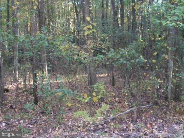 Land for Sale at Pinewood Ln. Oak Grove, Virginia 22443 United States