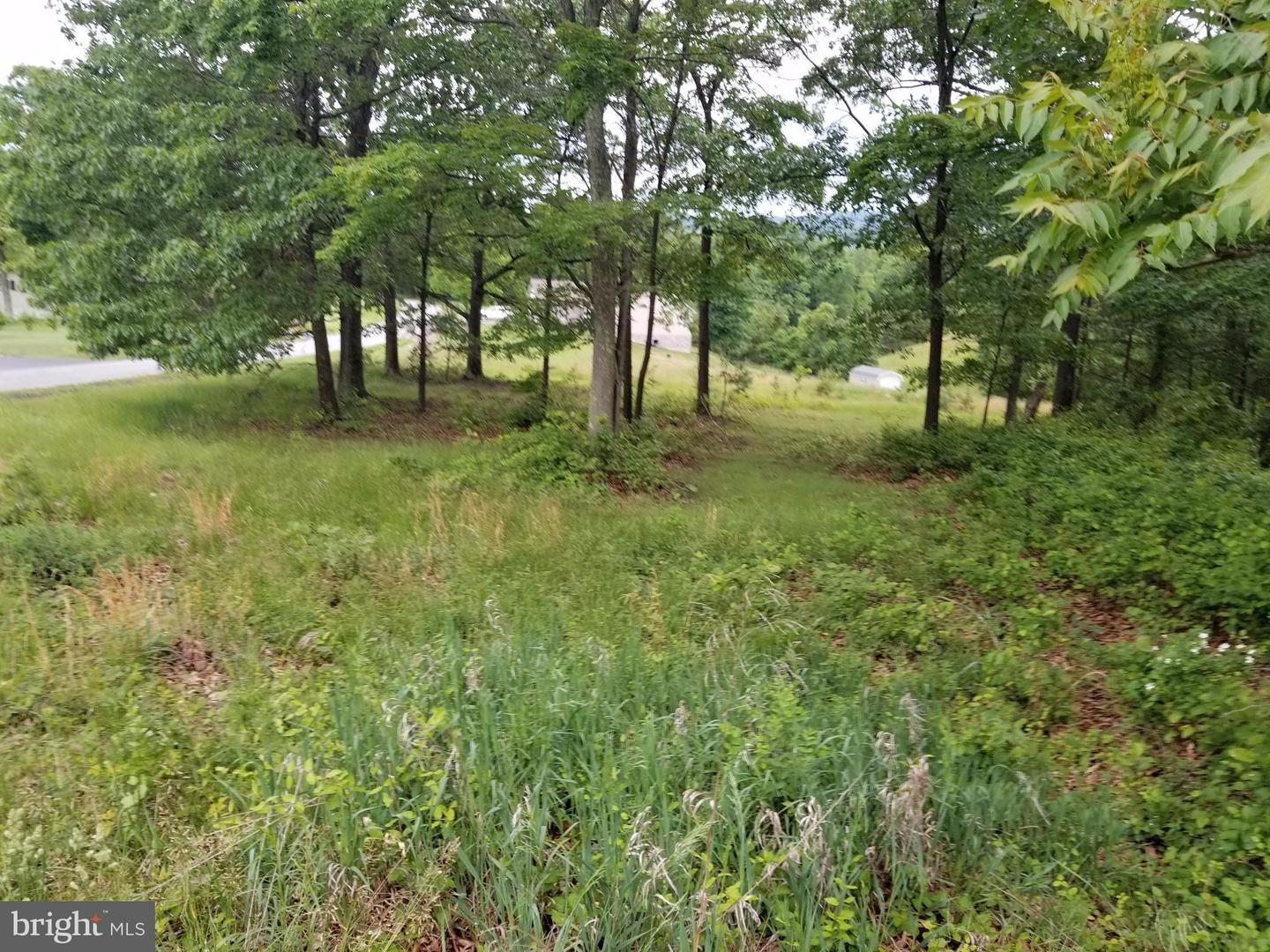 Land for Sale at Fairview Oaks Lane Berkeley Springs, West Virginia 25411 United States