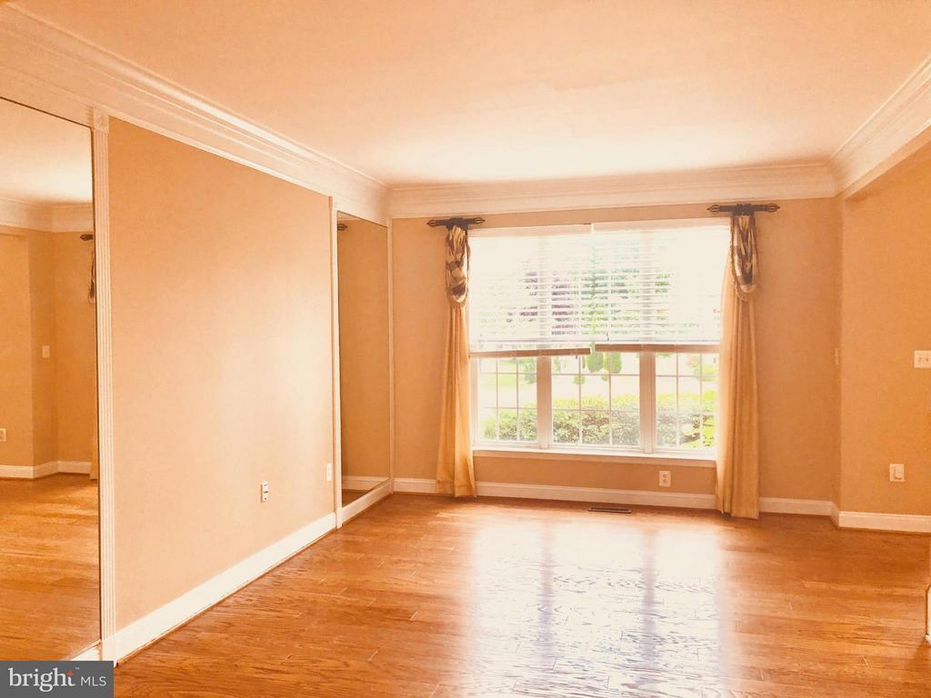 Living Room - 25804 SPRING FARM CIR, CHANTILLY