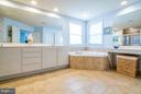 Separate Soaking Tub in your Master Bath - 42730 EXPLORER DR, ASHBURN